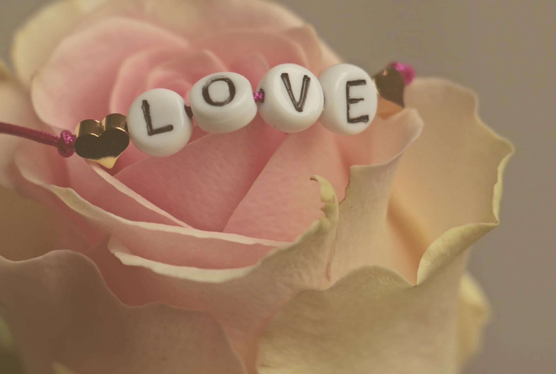 1526767022_love-3388626_1920.jpg