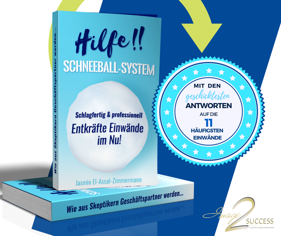 1532045782_Schneeballsystem-Buch.png